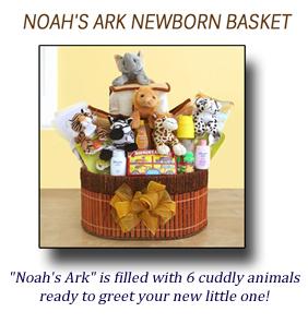 Noahs Ark Gift Basket
